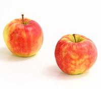 Apfel 'Elstar'