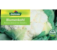 Blumenkohl, 12er Schale