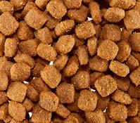 bosch Bio Puppy mit Karotten, Trockenfutter