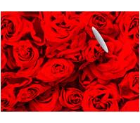 Braun+Company Geschenkpapier Red Roses, 2 m