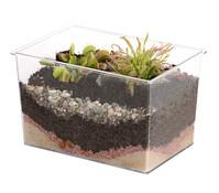 Carnivoren, fleischfressende Pflanzen im Aquarium, 20 x 13 x 15 cm