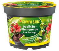 COMPO SANA Blumenerde inkl. Pflanztopf 2 für 1