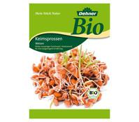 Dehner Bio Keimsprossen Weizen