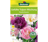 Dehner Blumenzwiebel Gefüllte Tulpen-Mischung 'Double Beauty'