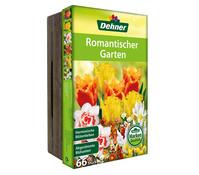 Dehner Blumenzwiebel Mischung Romantischer Garten
