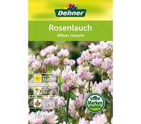 Dehner Blumenzwiebel Rosenlauch 'Allium roseum'