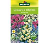 Dehner Blumenzwiebel Steingarten-Kollektion 'Mischung'