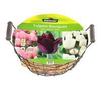 Dehner Blumenzwiebel Tulpen-Bouquet