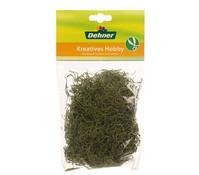 Dehner Dschungelmoos, hellgrün, 30 g