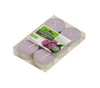 Dehner Duft-Teelichter, 6 Stück