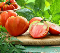 Dehner Gourmet Garten Ochsenherztomate 'Corazon', veredelt