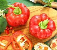 Dehner Gourmet Garten Tomatenpaprika 'Tommy'