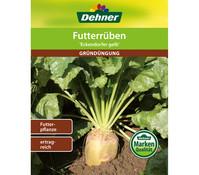 Dehner Gründüngung Futterrüben 'Eckdogelb Futterpflanze'