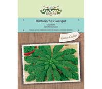 Dehner Historisches Samen Grünkohl 'Lerchenzungen'