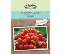 Dehner Historisches Samen Wildtomate 'Rote Murmel'