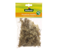 Dehner Islandmoos, natur, 50 g