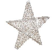Dehner Markenqualität LED Stern 3D