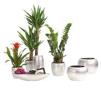 Dehner Premium Keramikserie