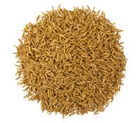 Dehner Premium Rasen-Nachsaat