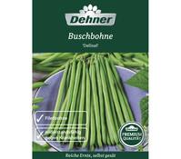 Dehner Premium Samen Buschbohne 'Delinel'