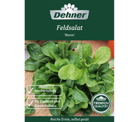 Dehner Premium Samen Feldsalat 'Baron'
