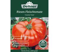 Dehner Premium Samen Riesen-Fleischtomate 'Country Taste'