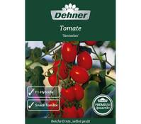 Dehner Premium Samen Tomate Santasian, F1-Hybride