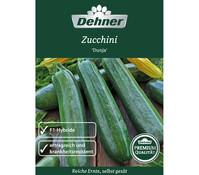 Dehner Premium Samen Zucchini 'Dunja'