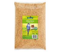 Dehner Qualitätsfutter Silberhirse für Vögel und Nager, 1 kg