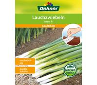 Dehner Saatband Lauchzwiebeln 'Totem F1'