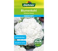 Dehner Samen Blumenkohl 'Erfurter Zwerg'