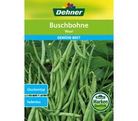 Dehner Samen Buschbohne 'Maxi'