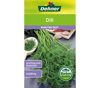 Dehner Samen Dill