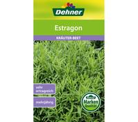Dehner Samen Estragon