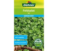 Dehner Samen Feldsalat 'Vit'