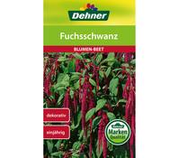 Dehner Samen Fuchsschwanz