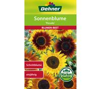 Dehner Samen für Sonnenblume 'Piccolo'