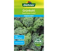Dehner Samen Grünkohl 'Dwarf Green Curled'