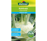 Dehner Samen Kohlrabi 'Superschmelz'