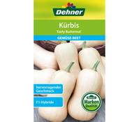 Dehner Samen Kürbis 'Early Butternut'