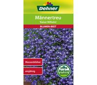 Dehner Samen Männertreu 'Kaiser Wilhelm'