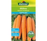 Dehner Samen Möhre 'Nantaise 2/Frühbund'
