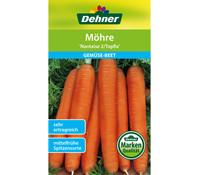 Dehner Samen Möhre 'Nantaise 2/Topfix'