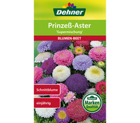 Dehner Samen Prinzeß-Aster 'Supermischung'