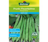 Dehner Samen Prunk-/Feuerbohne 'Preisgewinner'