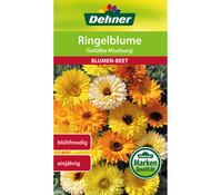 Dehner Samen Ringelblume 'Gefüllte Mischung'