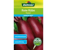 Dehner Samen Rote Rübe 'Forono'