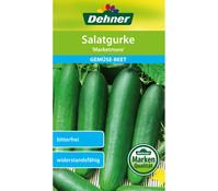 Dehner Samen Salatgurke 'Marketmore'