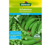 Dehner Samen Schalerbse 'Kleine Rheinländerin'
