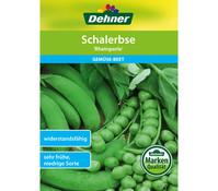 Dehner Samen Schalerbse 'Rheinperle'